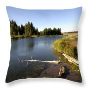 Snake River At Schwabacher Landing  Throw Pillow
