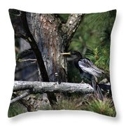 Snakebird At The Rookery Throw Pillow