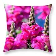Snapdragon Sunshine Throw Pillow