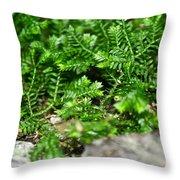 Sneaky Green Throw Pillow