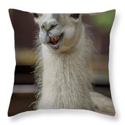 Snickering Alpaca Throw Pillow