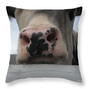 Sniffing Cow Throw Pillow