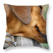 Sniffing Out Dreams Throw Pillow