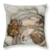 Snoozers Throw Pillow