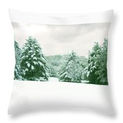 Snow Covered Countryside Throw Pillow