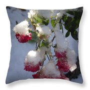 Snow Covered Roses Throw Pillow
