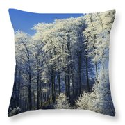 Snow Covered Trees In A Forest, County Throw Pillow