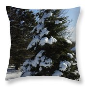 Snow Crusted Evergreen Throw Pillow