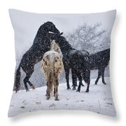 Snow Day I Throw Pillow by Betsy Knapp