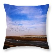 Snow Geese At Rest Throw Pillow