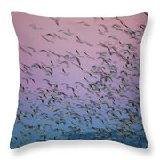 Snow Geese Painting Throw Pillow