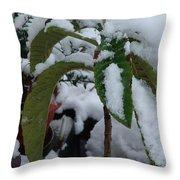 Snow Plant Throw Pillow