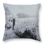Snow, Rime Ice, And Fog Cover Throw Pillow