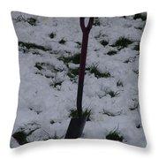 Snow  Spade Throw Pillow