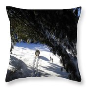 Snow Trail-under The Boughs Throw Pillow