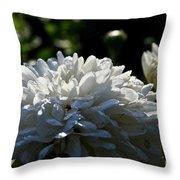 Snowball Dahlia Throw Pillow
