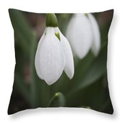 Snowdrop Purity Throw Pillow