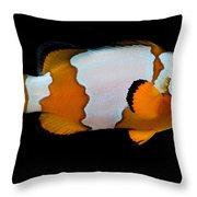 Snowflake Clownfish Throw Pillow