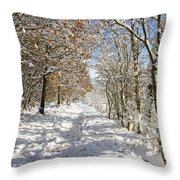 Snowpath Throw Pillow