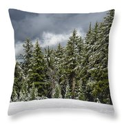 Snowstorm In The Cascades Throw Pillow