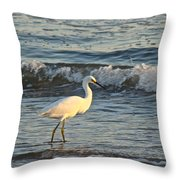 Snowy Egret - Egretta Thula Throw Pillow