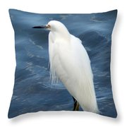 Snowy Egret 1 Throw Pillow
