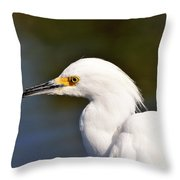 Snowy Egret Close Up Throw Pillow