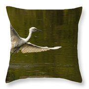 Snowy Egret Fishing In Florida Throw Pillow