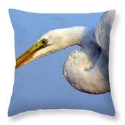 Snowy Egret Ready Throw Pillow