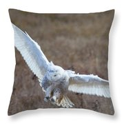 Snowy Flight Throw Pillow
