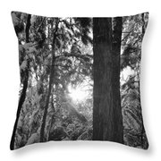 Snowy Forest Bw Throw Pillow