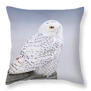 Snowy Owl I Throw Pillow