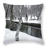 Snowy Park Throw Pillow