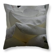 Snowy Rose Throw Pillow
