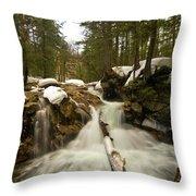Snowy Veil Throw Pillow