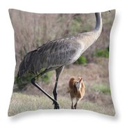 So Big Throw Pillow