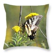 So Fragile - Butterfly Throw Pillow