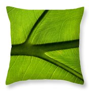 So Vein Throw Pillow