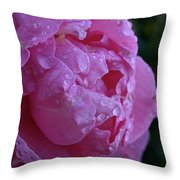Soaked Throw Pillow