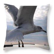 Soaring Gull Throw Pillow