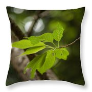 Soaring Leaves Throw Pillow