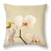 Soft And Subtle Throw Pillow