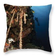 Soft Coral Reef, Indonesia Throw Pillow