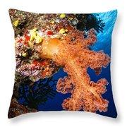 Soft Coral Seascape, Fiji Throw Pillow