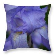 Soft Petals Throw Pillow