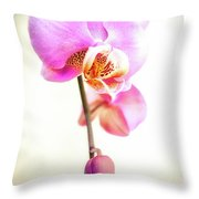 Soft Pink Orchid Throw Pillow