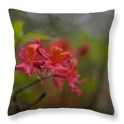 Soft Red Rhodies Throw Pillow