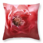 Soft Rose In Square Format Throw Pillow