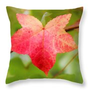 Softly Comes The Fall  2 Throw Pillow