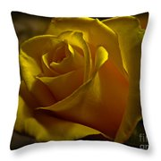 Softly Lit Throw Pillow